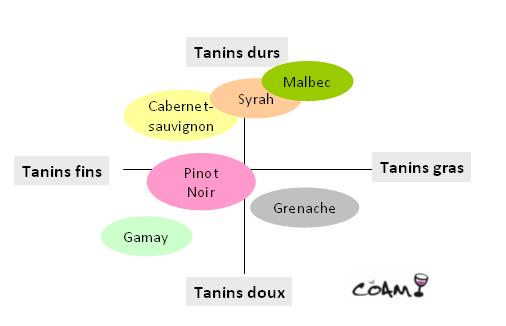 vins et tanins
