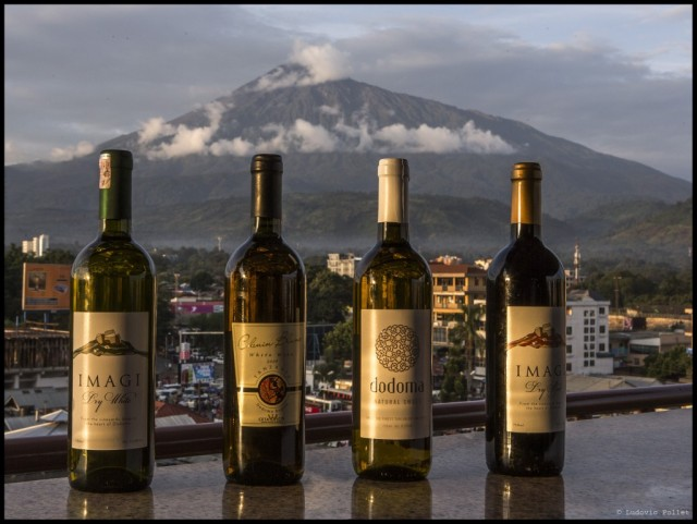 Les nouveaux vins de Tanzanie