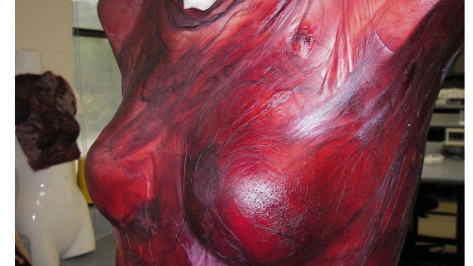 Robe faite à partir de vin fermenté