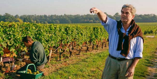 La famille Bernard dans les vignes