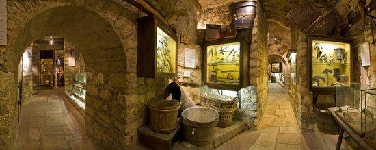 Musées sur le vin : Musée du Vin de Paris