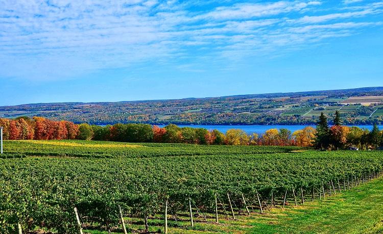 Finger Lakes - New York
