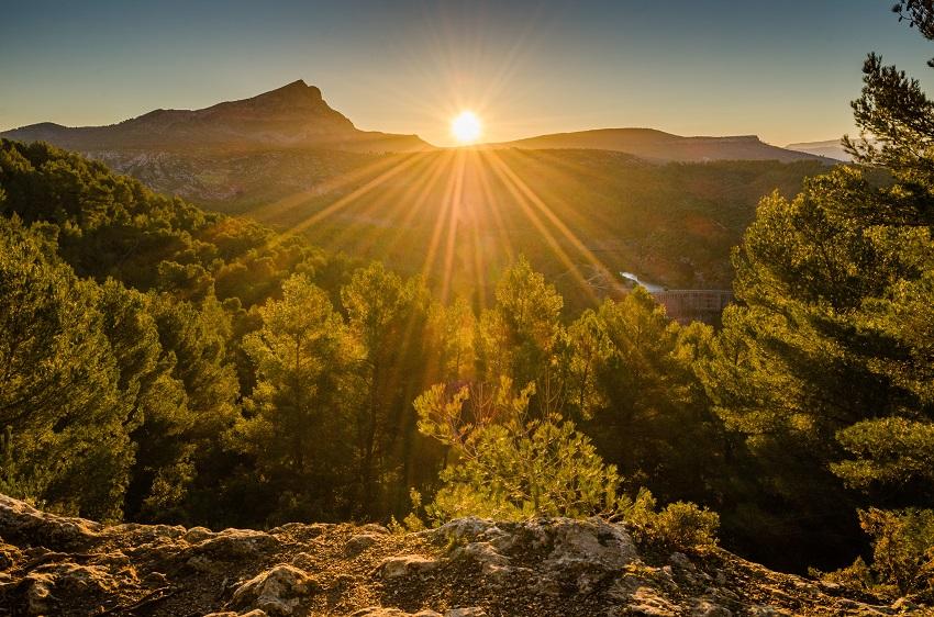 """""""Tour de France"""" of wine regions: Provence"""