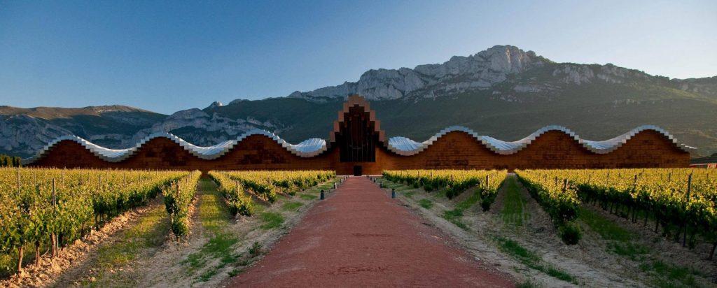 Beautiful vineyards: Bodegas Ysios