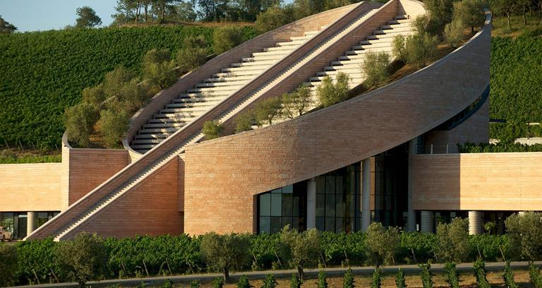 Beautiful vineyards: Petra Winery