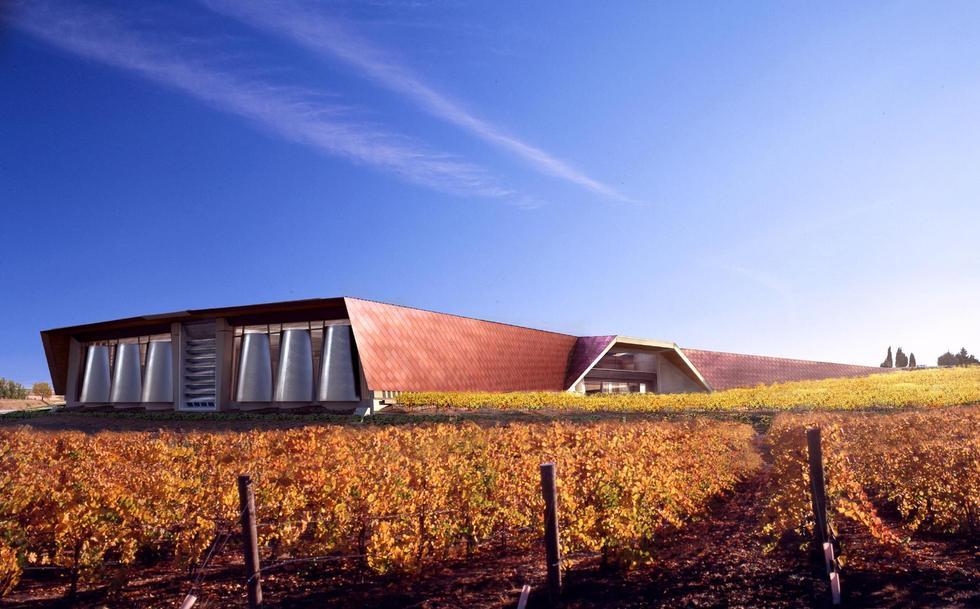 Beautiful vineyards: Bodegas Portia
