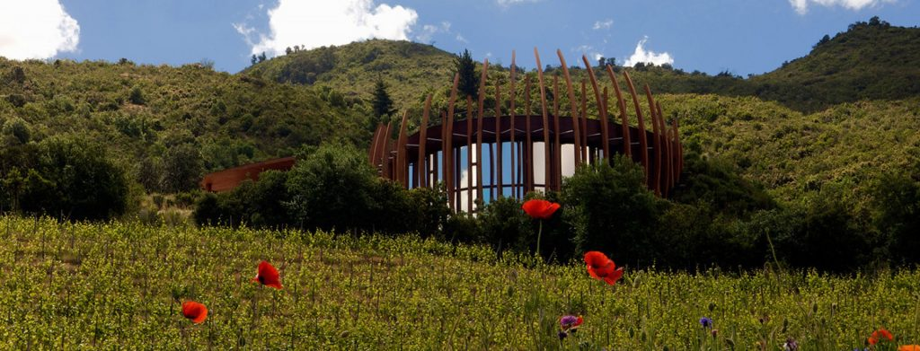 Beautiful vineyards: Lapostolle Clos Apalta