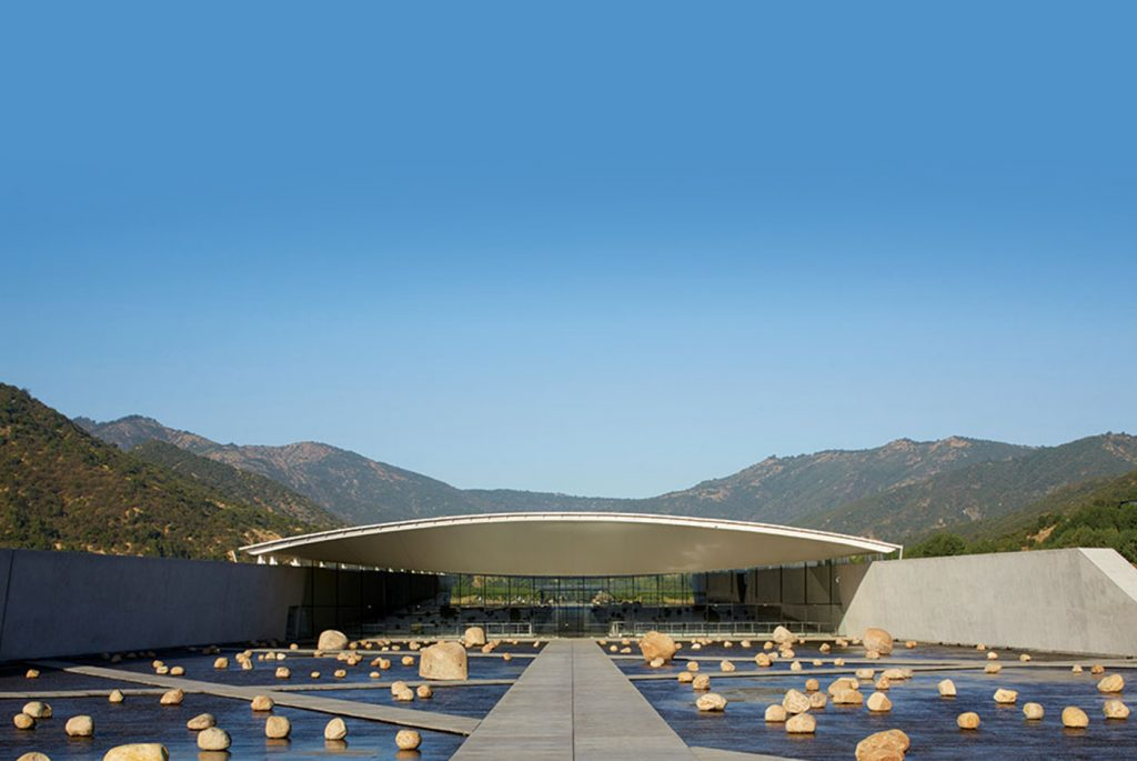 Beautiful vineyards: Vik