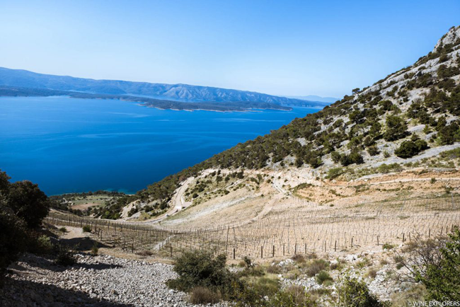 Try local wine if you travel to Croatia