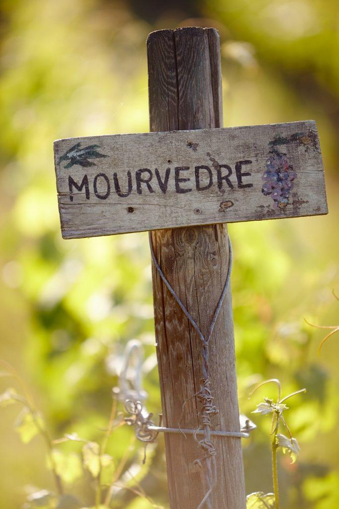 Le Mourvèdre
